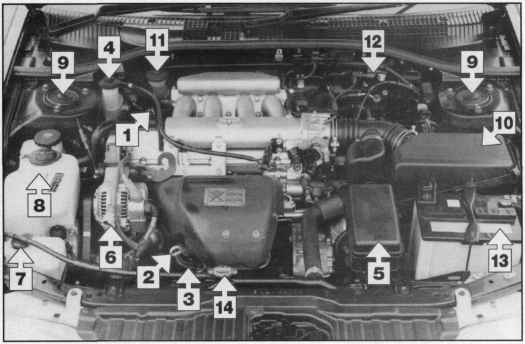 Info Qvj on toyota celica wiring diagram